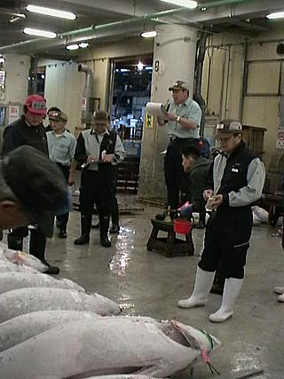 This *could* just be a library photo of the tuna auction at Tsukiji, of course...