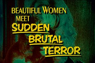 All the information you need, really. From the first DVD, the trailer for 'Women And Bloody Terror', showing in a double bill with 'Night Of Bloody Horror'. It bloody is, really.